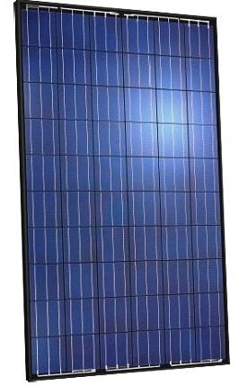Jinko 250 Watt Polycrystalline 265p 60